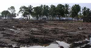 Village in Sri Lanka after a tsunami hit in 2004